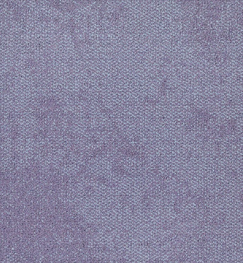 Interface Composure 4169062 Lavender